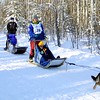 The World Championship Sled Dog Race takes place during Rondy. This is our main sprint dog competition.......3 days of races with mushers and dogs covering 25 miles each day.  And sometimes they even cover it at the same time.  (bit of mushing humor there)