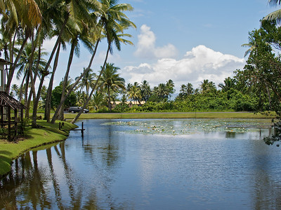 Fiji 2009