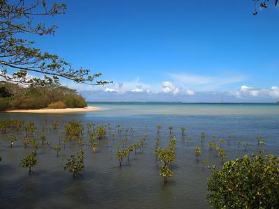 Fiji 2010