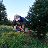 "KRISTOPHER RADDER - BRATTLEBORO REFORMER<br /> For nearly 40 years, people have headed to Elysian Hills Tree Farm, in Dummerston, Vt., to find the right tree for their holiday celebrations. <br /> <br /> ""We want them to have the time of their life; we want real fun family activity or just a happy time,"" said Kristin Manix, who runs the tree farm. <br /> <br /> Prices of the trees average $50 dollars. Elysian Hills Tree Farm, which is owned by Walker Farm, is open Monday through Thursday from noon to 4 p.m., Friday noon to 7 p.m. and Saturday and Sunday from 10 a.m. to 4 p.m. until Dec. 24."