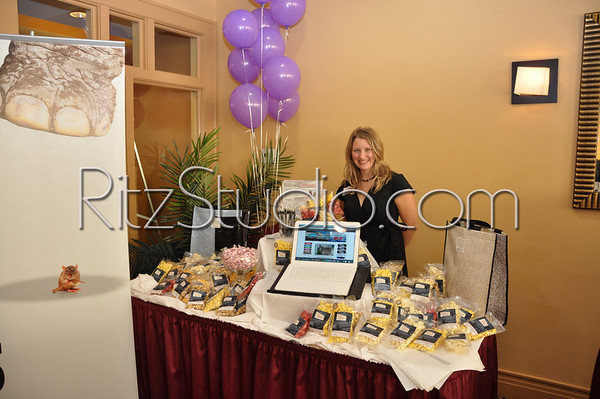 Purses for a Purpose 2010, Domestic Violence Shelter Fundraiser