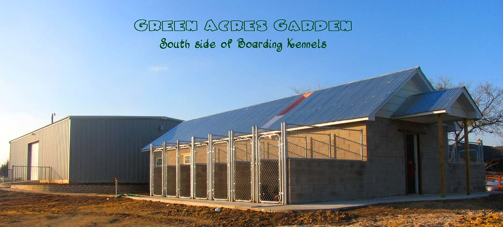 Green Acres Garden Boarding Kennels !!!!!! Excellent but affordable & truly LOVING pet boarding!
