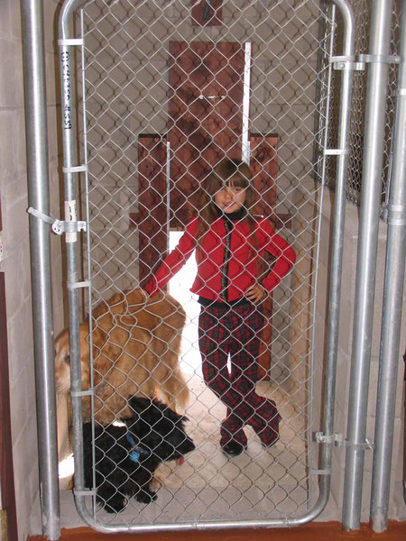 Faith and some of our dogs in run #7 with Doggie door open in highest position - It also locks halfway up if a smaller guest is here. I even put it there mid-position for some of the bigger pups if it is really cold! There are 3 (not 1) clear heavy plastic flaps on each and every doggy door. <br /> <br /> - Just FYI - I lock these at night or in weather extremes...<br /> <br /> Duke the Golden Retriever (100 lbs) and Angus - our new little male Scottie.