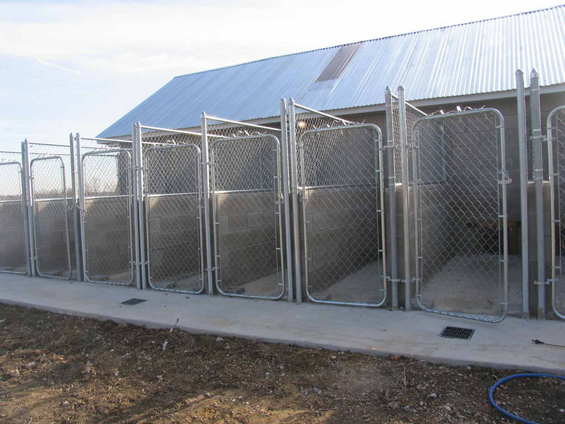 A view of some of the outdoor portions of the runs... Pleaase note the 4 foot walls between the runs so pets won't fight!!<br /> <br /> THis was before the landscaping, steel reinforcement and cover...