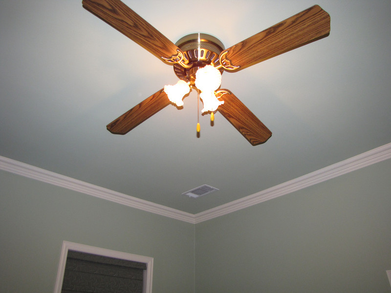 3 Ceiling fans Green Acres Garden B&B - Luxury in the country! Private Cottage on Lake Lavon...