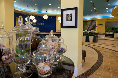 Hotel Indigo Miami Lakes_Lobby0629