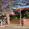 One of Harare's many micro businesses, this one on the corner of 5th and Union.