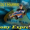 Colt's photo cards 2009