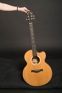 Howard Guitars