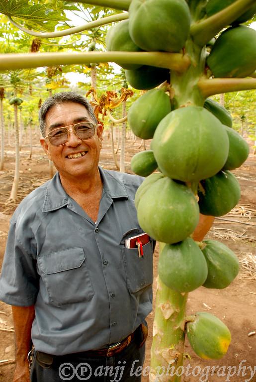 Ken Kamiya, of Kamiy Gold Papaya Farm photographed by anjj lee