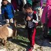 Learning Farm school visit