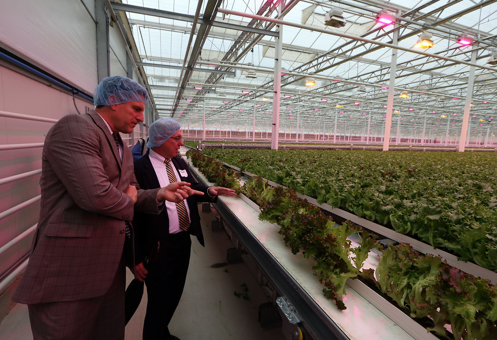 . Official opening of expansion of Little Leaf Farms greenhouse, from 2.5 acres to 5 acres, for hydroponic growing of baby lettuce and other greens. Housing and Community Development secretary Jay Ash, left, and Roy ANgel, vice president of Mass Development, tour greenhouse. (SUN/Julia Malakie)