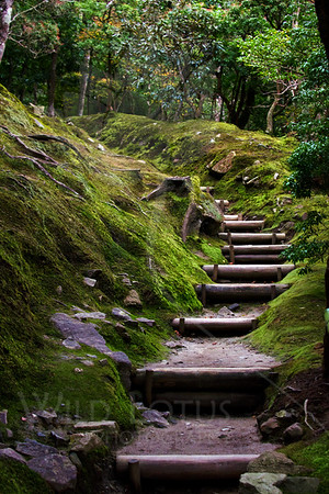 Way of Contemplation<br /> <br /> Location pictured :: Ginkakuji Temple, Kyoto<br /> <br /> 012013_007976 ICC sRGB 16in x 24in pic
