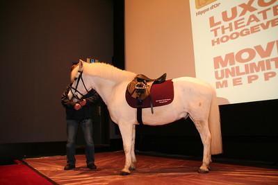 paardsint12