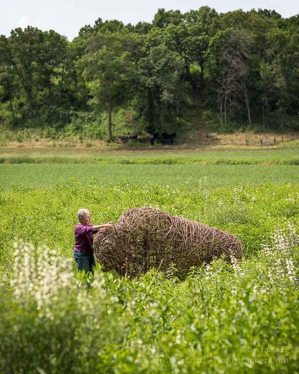Basket Woven Buffalo