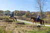 Donald Park Horse Trails