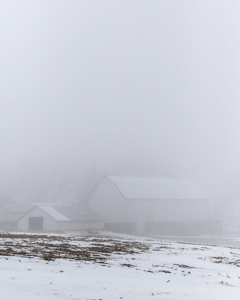 Foggy Winter Thaw