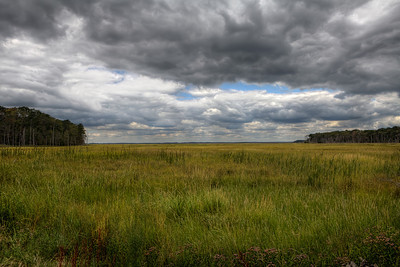 Crow Creek Meadow 1/9