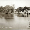 View of Mill Pond, Genoa, NY. (Photo ID: 27964)