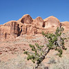 Moab, Utah and American Mountain Guides Association meetings October 30, 2009 to November 1, 2009 - Along Potash Road