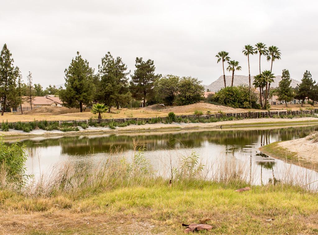 Valley - Pond