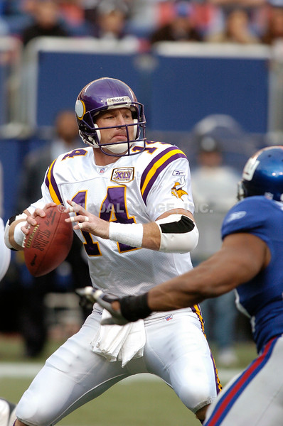 Brad Johnson - Minnesota Vikings