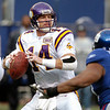 Brad Johnson - Minnesota Vikings