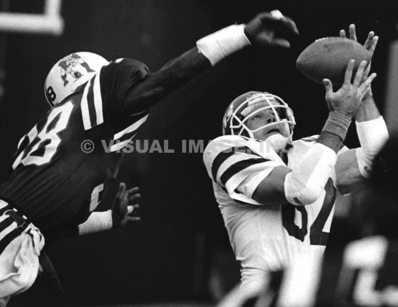 Roland James/New England Patriots - Mickey Shuler/New York Jets