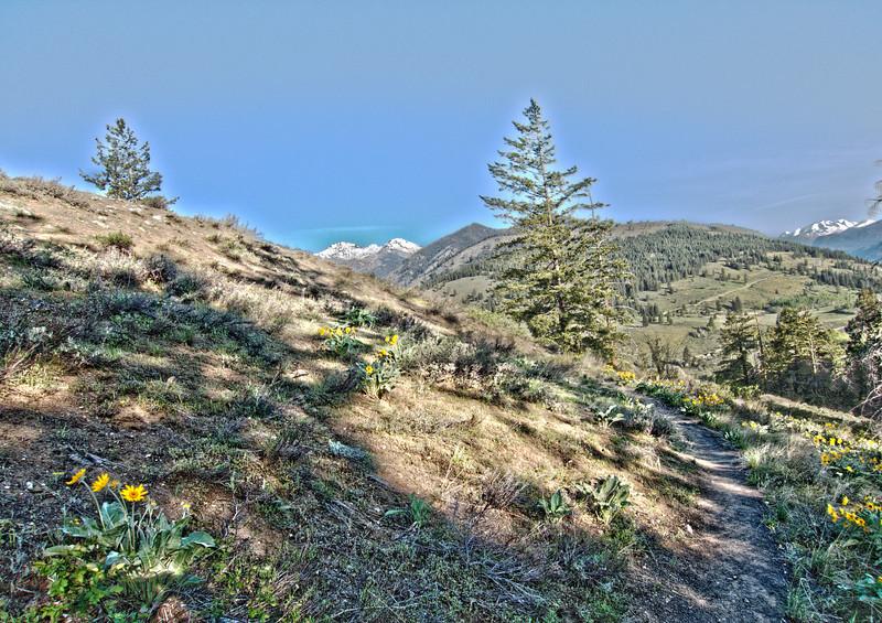 HDR-Processed - Sun Mountain Lodge interpretive trail