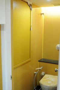 Not happy with the color of the vitrified tile.  Wayyyy too yellow.