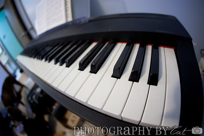 my full length electronic piano