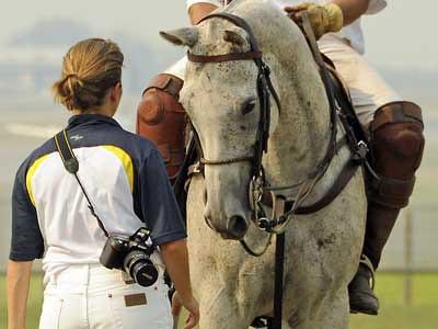 Kelowna polo tournament sponsored by Panorama Equine