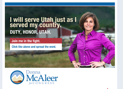 Campaign for Donna McAleer.