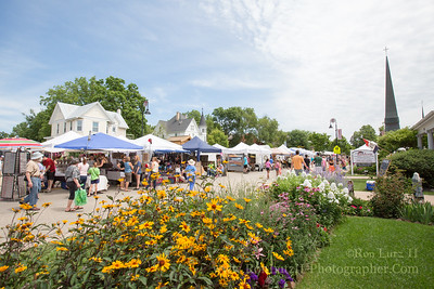 Art Fair - Summer of 2015