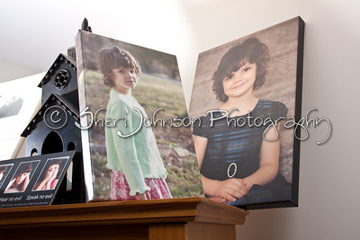 Canvas Gallery Wraps - these come ready to hang on the wall as they are, a very modern, clean look.