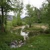 Ponds Eagle Co Colorado
