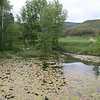 Constructed Ponds Eagle Co Colorado<br /> Build up of algae can be controlled with aereators or increased flow.