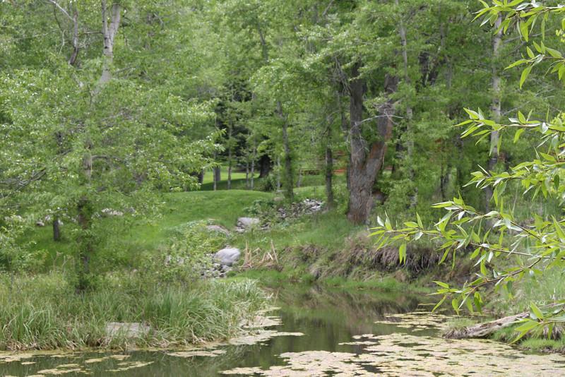 ponds built in Eagle co colorado