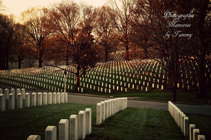 ADVERTISEMENT -Arlington Cemetary