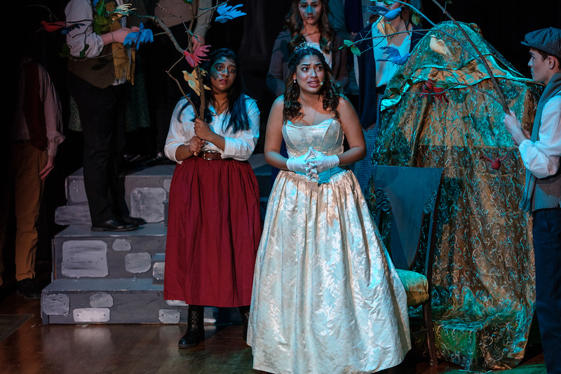 2018-03 Into the Woods Performance 1463