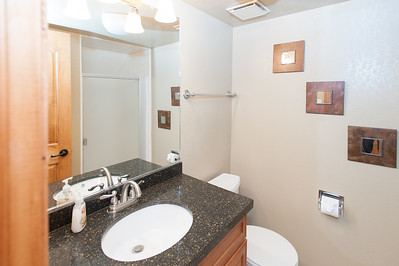 Downstairs bathroom w/shower