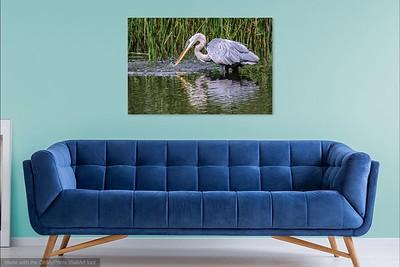 074 Heron 3jpg