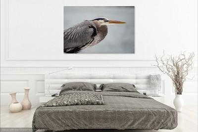 040 Heron 1 copy