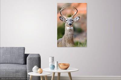 042 Deer Me copy