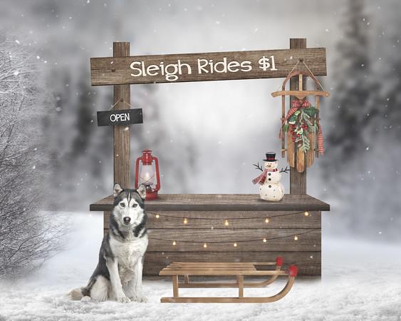 1-ChristmasSleighRideStandDigitalBackdrop
