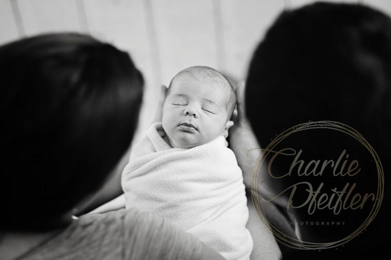 Hannah Smith Newborn Nov 2016 - 184bw