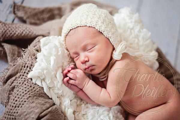 Angela McNally Newborn  - 232