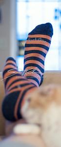 SockGuyFall-3105