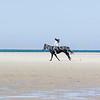 Horseback Riding - Stock