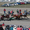 Harness Racing - Stock